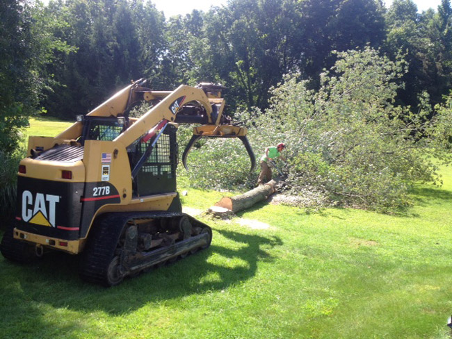 Caterpillar multi-terrain loaders have rubber tracks with low ground pressure for minimal impact on lawns. (3 lbs. per square inch ground pressure) 7 foot wide, compact size for accessibility. Moves materials (logs and brush) from yard to the street to be chipped. And we have several experienced operators.