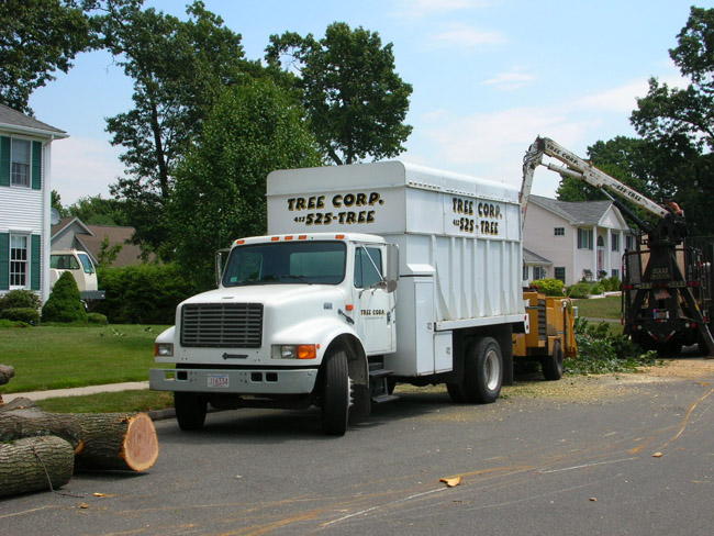 Several large capacity chip and dump trucks that move tree debris off your property swiftly and efficiently.